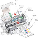 empresa de locação de máquinas copiadoras para escola Cotia